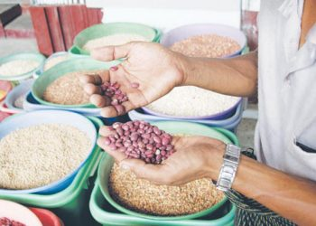 Myanmar may resume bean exports to India in June