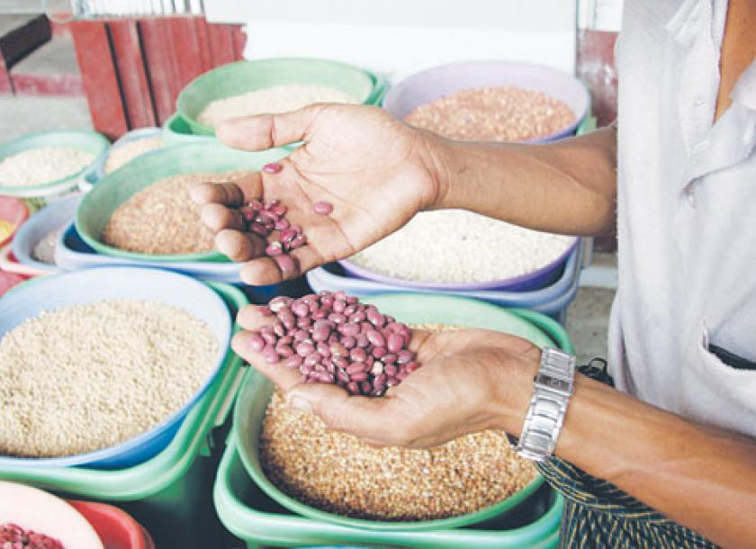 India expected to re-start importing Myanmar beans
