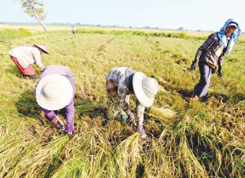 Rural development Loan proposed by Ministry of Agriculture